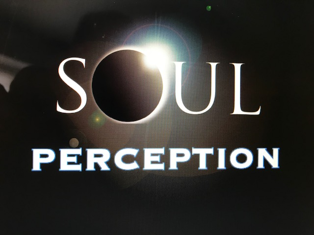 Soul Perception with Firefly on the Fly food truck